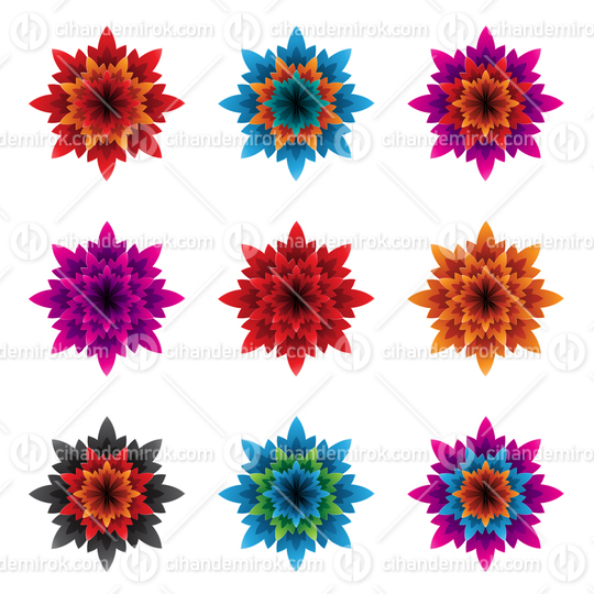Colorful Bold Flowers with Spiky Petals Vector Illustration